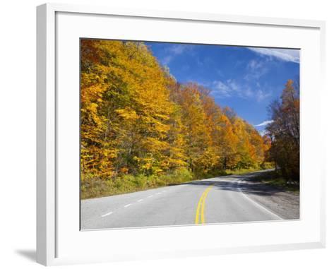 Monongahela National Forest at Route 250, Cheat Bridge, West Virginia, USA-Walter Bibikow-Framed Art Print