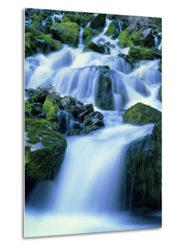 Periodic Spring During Period of High Flow, Salt River Range, Bridger-Teton National Forest, WY-Scott T^ Smith-Metal Print