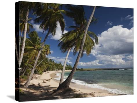 Playa El Frances Beach, El Frances, Samana Peninsula, Dominican Republic-Walter Bibikow-Stretched Canvas Print
