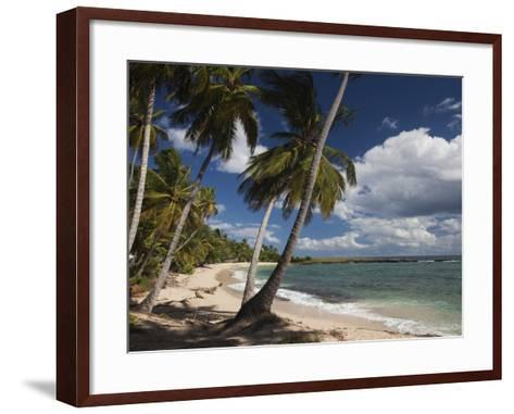 Playa El Frances Beach, El Frances, Samana Peninsula, Dominican Republic-Walter Bibikow-Framed Art Print