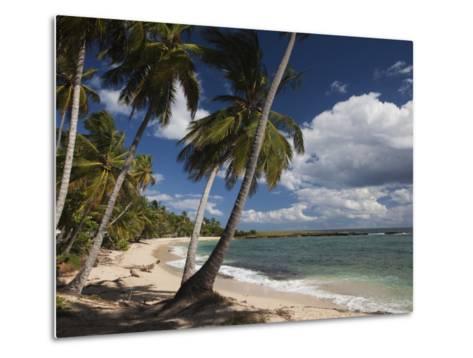 Playa El Frances Beach, El Frances, Samana Peninsula, Dominican Republic-Walter Bibikow-Metal Print