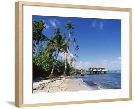 Coconuts Beach Club Resort, Apia, Samoa-Douglas Peebles-Framed Art Print