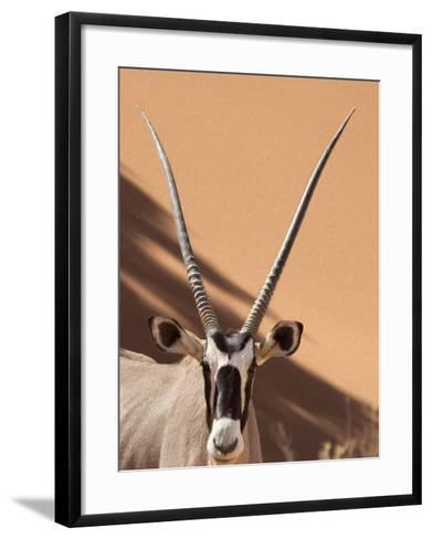 Close-Up of Oryx, Namib-Naukluft Park, Namibia, Africa-Wendy Kaveney-Framed Art Print