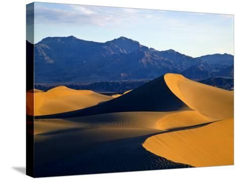 Sand Dunes in Mesquite Flat, Death Valley National Park, California, USA-Bernard Friel-Stretched Canvas Print
