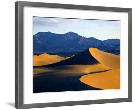 Sand Dunes in Mesquite Flat, Death Valley National Park, California, USA-Bernard Friel-Framed Art Print