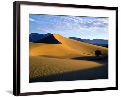 Sand Dunes in Mesquite Flat, Death Valley National Park, California, USA-Bernard Friel-Framed Art Print