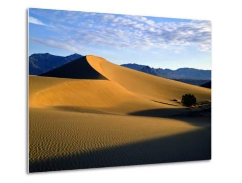 Sand Dunes in Mesquite Flat, Death Valley National Park, California, USA-Bernard Friel-Metal Print