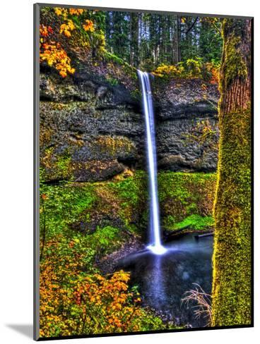 South Falls at Silver Falls State Park, Oregon, USA-Joe Restuccia III-Mounted Photographic Print