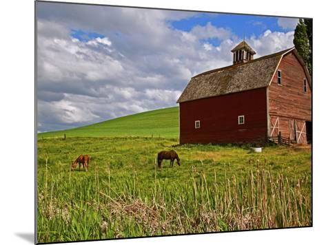 A Ride Through the Farm Country of Palouse, Washington State, USA-Joe Restuccia III-Mounted Photographic Print