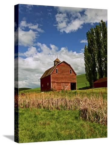 A Ride Through the Farm Country of Palouse, Washington State, USA-Joe Restuccia III-Stretched Canvas Print