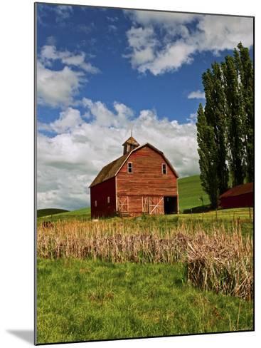A Ride Through the Farm Country of Palouse, Washington State, USA-Joe Restuccia III-Mounted Photographic Print