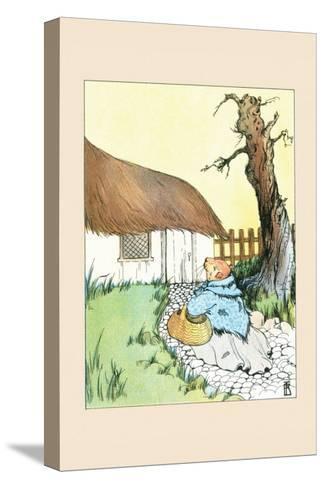 Poor Guinea Pig-Frances Beem-Stretched Canvas Print