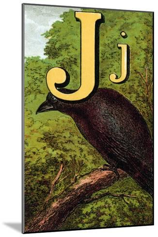 J For the Jackdaw, Perky And Bold-Edmund Evans-Mounted Art Print