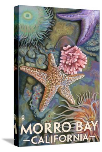 Morro Bay, CA - Tidepool-Lantern Press-Stretched Canvas Print