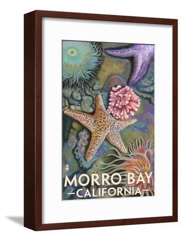 Morro Bay, CA - Tidepool-Lantern Press-Framed Art Print