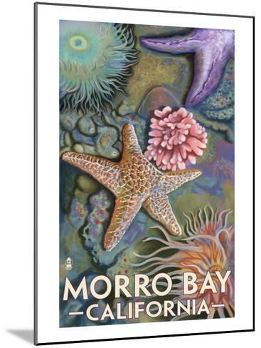 Morro Bay, CA - Tidepool-Lantern Press-Mounted Art Print