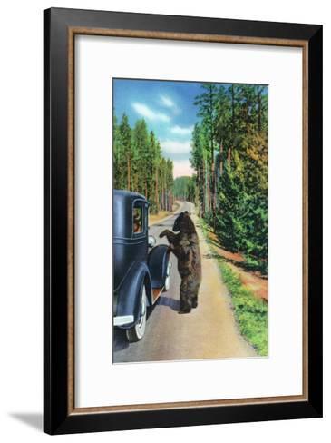 Yellowstone Nat'l Park, Wyoming - Bear Begging by a Car-Lantern Press-Framed Art Print