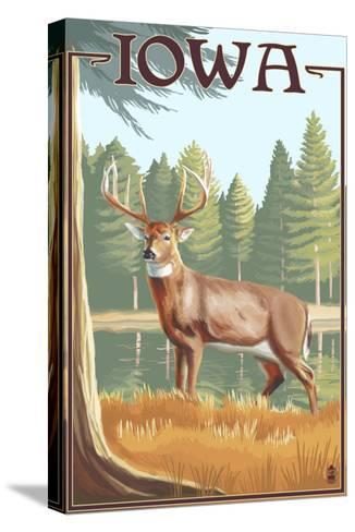 White Tailed Deer - Iowa-Lantern Press-Stretched Canvas Print