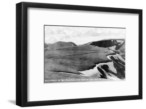 Rocky Mt Nat'l Park, Colorado - Trail Ridge Road Switchbacks near Iceberg Lake-Lantern Press-Framed Art Print