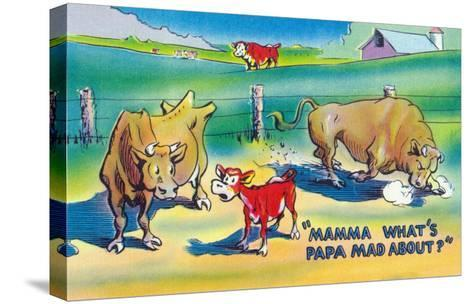 Comic Cartoon - Red Calf Asking Mamma Cow Why Papa Bull is Mad-Lantern Press-Stretched Canvas Print