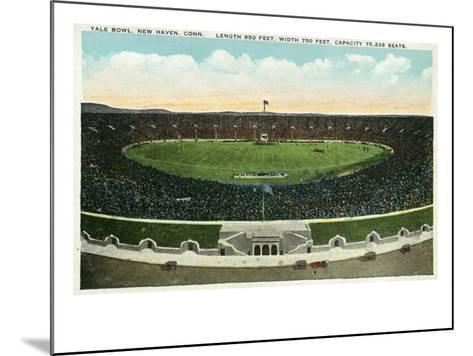 New Haven, Connecticut - Panoramic View of Yale Bowl-Lantern Press-Mounted Art Print