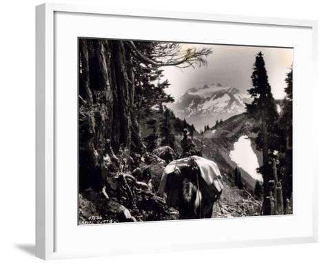 Hoh-Solduc Trail, Olympic Peninsula, Undated-Asahel Curtis-Framed Art Print