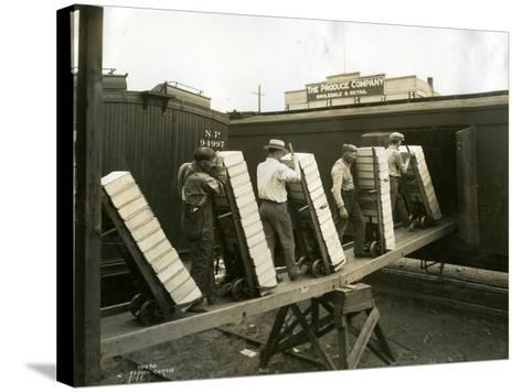Loading Boxes of Cherries, Kenniwick, 1928-Asahel Curtis-Stretched Canvas Print