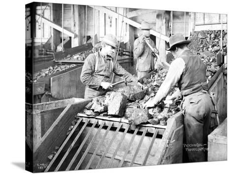 Picking Coal, Franklin Mine, Circa 1902-Asahel Curtis-Stretched Canvas Print