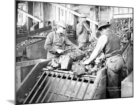 Picking Coal, Franklin Mine, Circa 1902-Asahel Curtis-Mounted Giclee Print