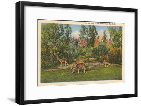 Deer, Adirondack Mountains, New York--Framed Art Print
