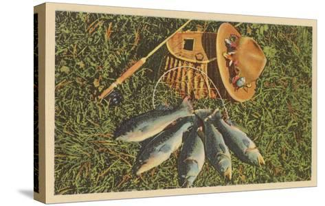 Trout by Creel--Stretched Canvas Print