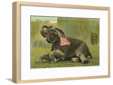 Elephant with Flag, Zoo in Cleveland, Ohio--Framed Art Print