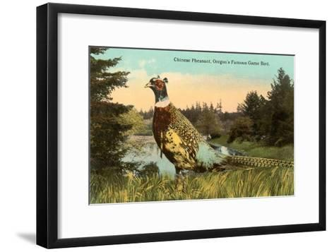 Chinese Pheasant, Oregon Game Bird--Framed Art Print