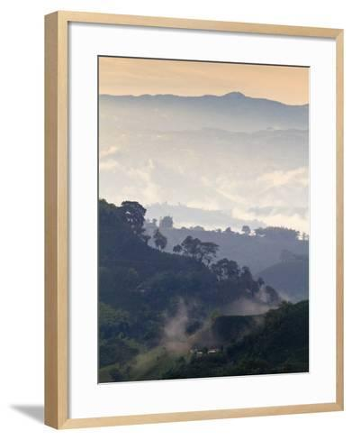 Colombia, Caldas, Manizales, Chinchina, Coffee Plantation at Hacienda De Guayabal at Dawn-Jane Sweeney-Framed Art Print