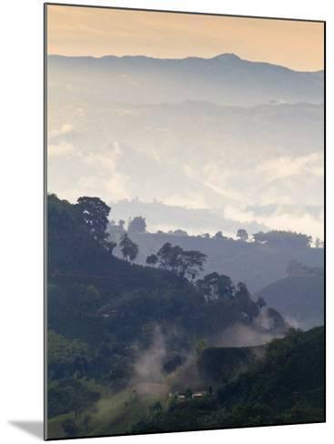 Colombia, Caldas, Manizales, Chinchina, Coffee Plantation at Hacienda De Guayabal at Dawn-Jane Sweeney-Mounted Photographic Print