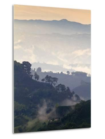 Colombia, Caldas, Manizales, Chinchina, Coffee Plantation at Hacienda De Guayabal at Dawn-Jane Sweeney-Metal Print