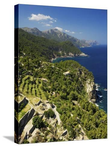 View from Mirador De Ses Animes, Mallorca, Spain-Neil Farrin-Stretched Canvas Print