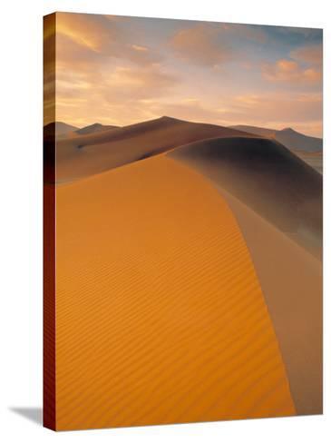 Sand Dune in Desert, Namib Desert, Namibia-Peter Adams-Stretched Canvas Print