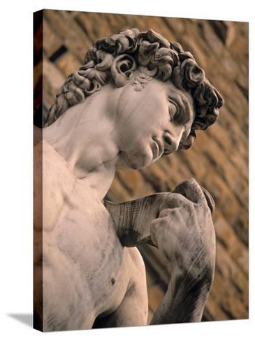 Statue of David, Piazza Della Signoria, Florence, Tuscany, Italy-Walter Bibikow-Stretched Canvas Print
