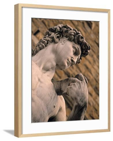 Statue of David, Piazza Della Signoria, Florence, Tuscany, Italy-Walter Bibikow-Framed Art Print