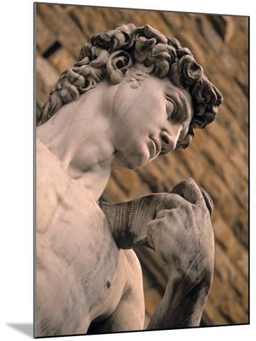 Statue of David, Piazza Della Signoria, Florence, Tuscany, Italy-Walter Bibikow-Mounted Photographic Print