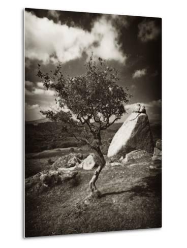 Photospace-David Baker-Metal Print