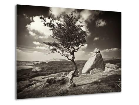 Shuffletags-David Baker-Metal Print