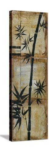 Patinaed Bamboo II-Jennifer Goldberger-Stretched Canvas Print