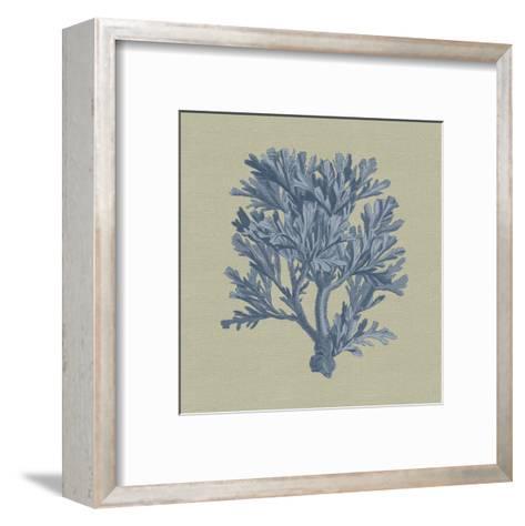 Chambray Coral IV-Vision Studio-Framed Art Print