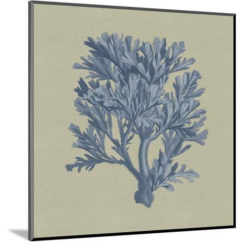 Chambray Coral IV-Vision Studio-Mounted Art Print