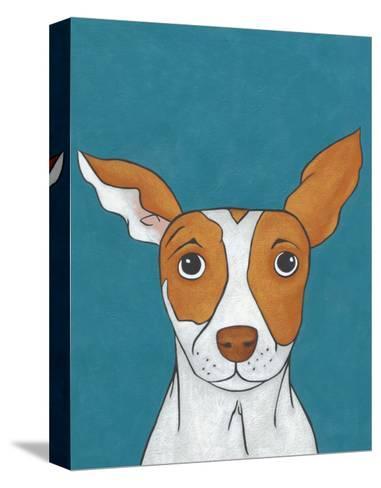 Pet Portraits II-Chariklia Zarris-Stretched Canvas Print