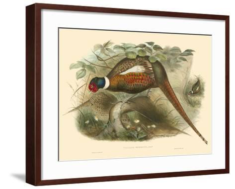 Gould Pheasants II-John Gould-Framed Art Print