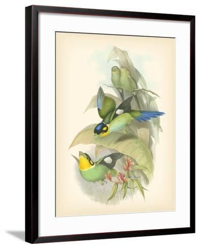 Gould Birds of the Tropics I-John Gould-Framed Art Print