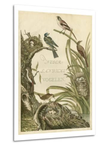 Sanctuary for Birds-Nozeman-Metal Print